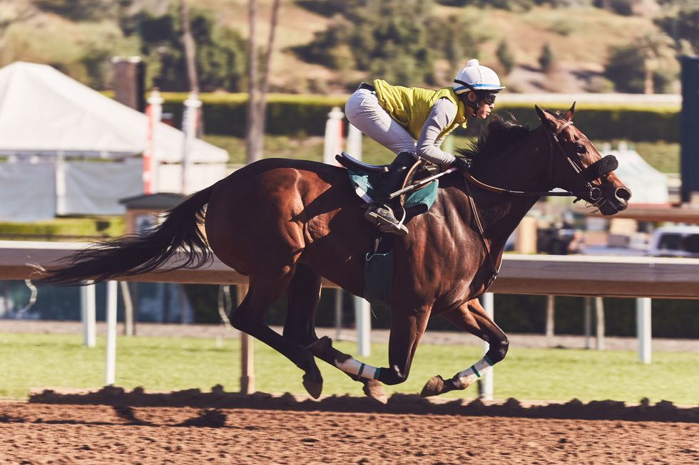 A Female Jockey Continues To Beat The Odds