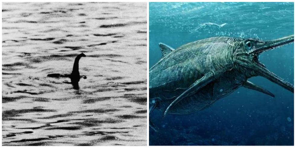 Scientists May Have Just Unveiled The Real Loch Ness Monster