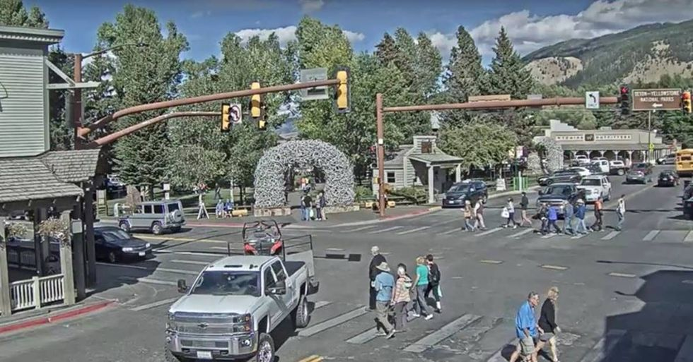 People Are Watching A Boring Live Stream In Wyoming For No Apparent Reason