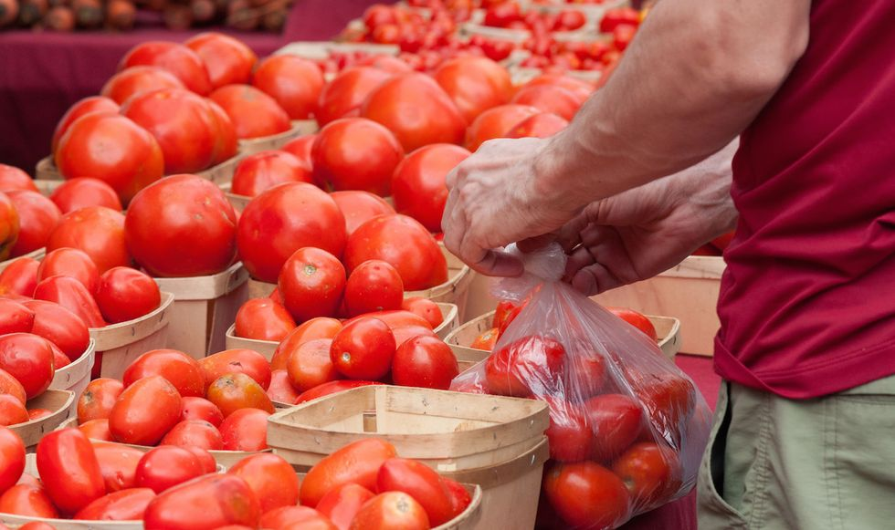 How To Pick A GOOD Tomato