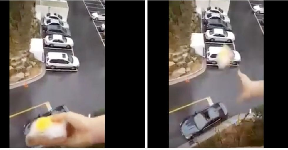 Woman Defies The Odds To Heroically Drop Sandwich Into Car Several Stories Below
