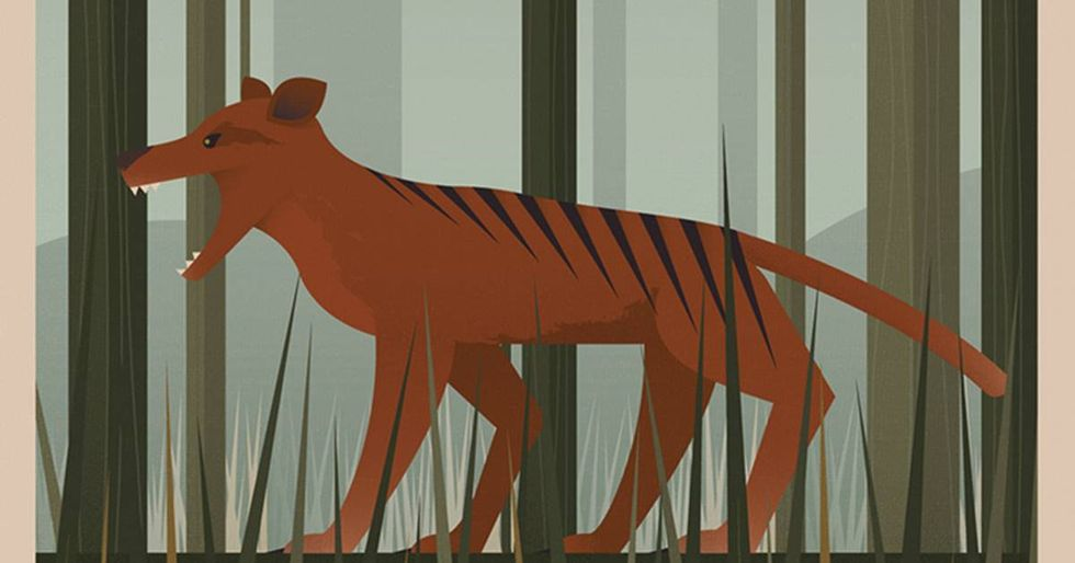 Unknown Tourism Commemorates Extinct Species With Vintage-Looking Posters