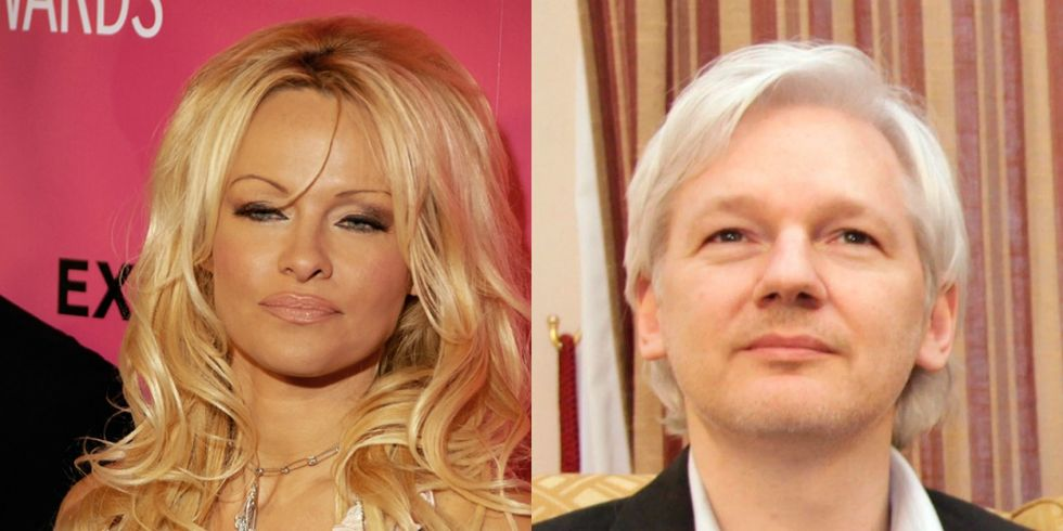 Conspiracy Theorists Claim Pamela Anderson May Have Poisoned Julian Assange