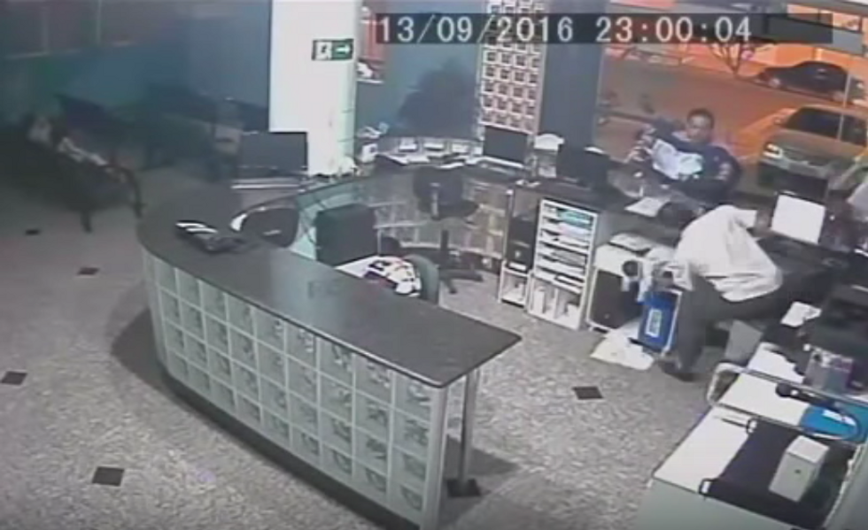 Random Act Of Sport: Brazilian Hospital Receptionist Saves Baby With One-Handed Catch