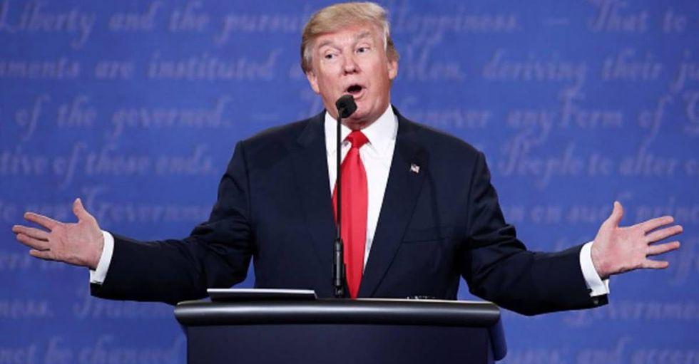 Twitter Mocks The Donald With #TrumpBookReport