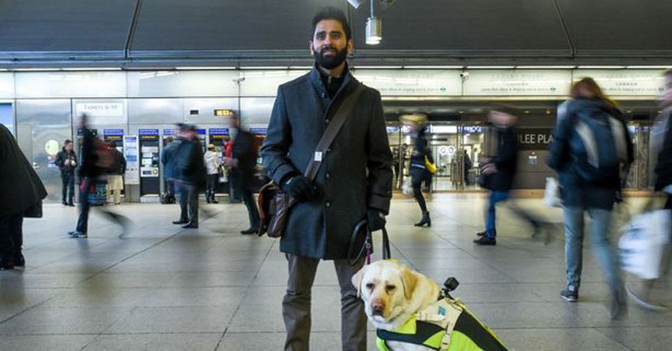 A Blind Man Put A GoPro On His Guide Dog To Show How Much Daily Abuse They Face