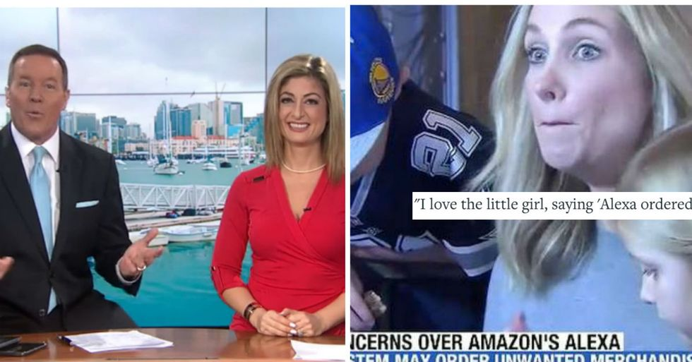 TV Anchor Accidentally Triggers Wave Of Amazon Dollhouse Purchases