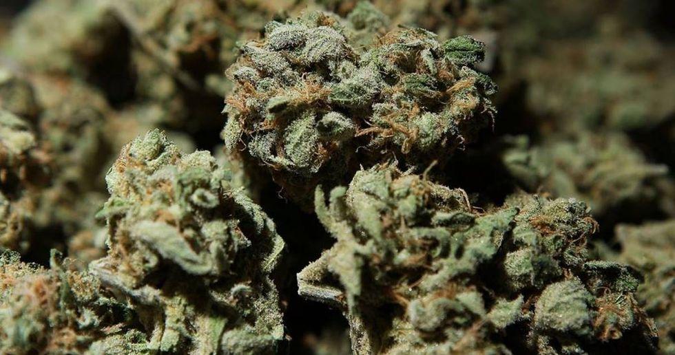 Marijuana Company Claims Its Weed Will Improve Your Sex Life