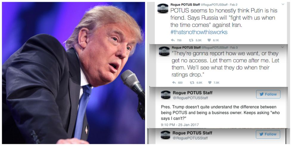 'Rogue' Twitter Account Claims To Be Resistance Inside Trump's White House