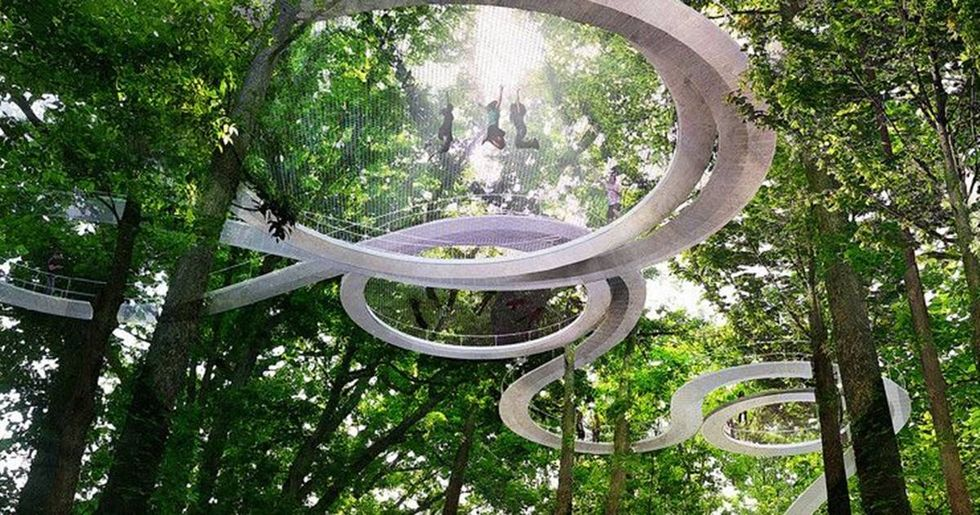 A New Park In Turkey Lets You Walk Among The Treetops