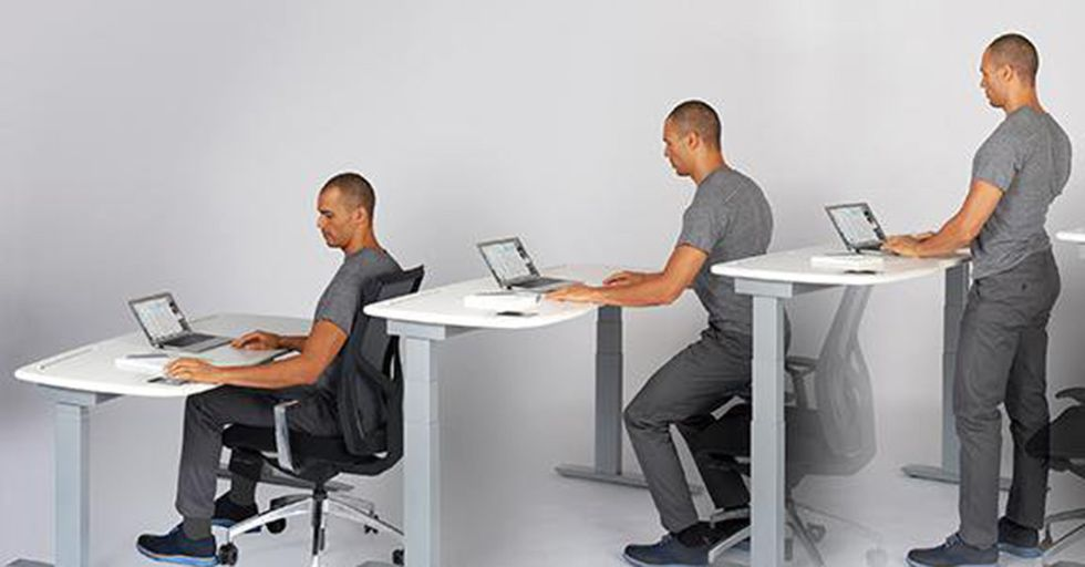 Standing Desks Can Ruin Your Productivity, Thanks To A Powerful Evolutionary Trait
