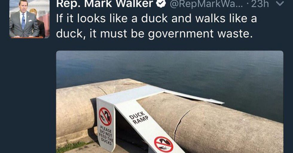 Raising The Bar For Evil Everywhere, A Politician Deemed This Ramp For Ducklings 'A Waste'