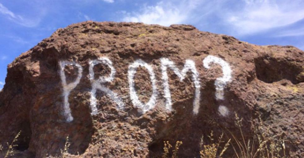 Park Officials Offer Up A Pitiful Reminder Not To Deface Nature For Your 'Promposals'