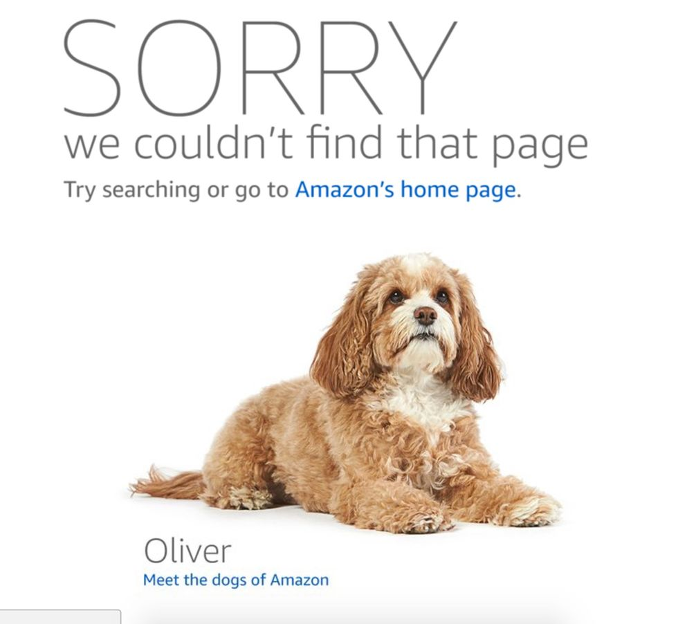 Amazon Removes The Most Offensive 'Product' In The History Of Things