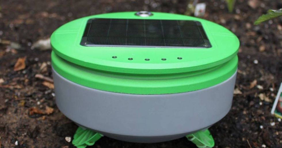 The Roomba Creator's New Robot Automatically Weeds Your Garden
