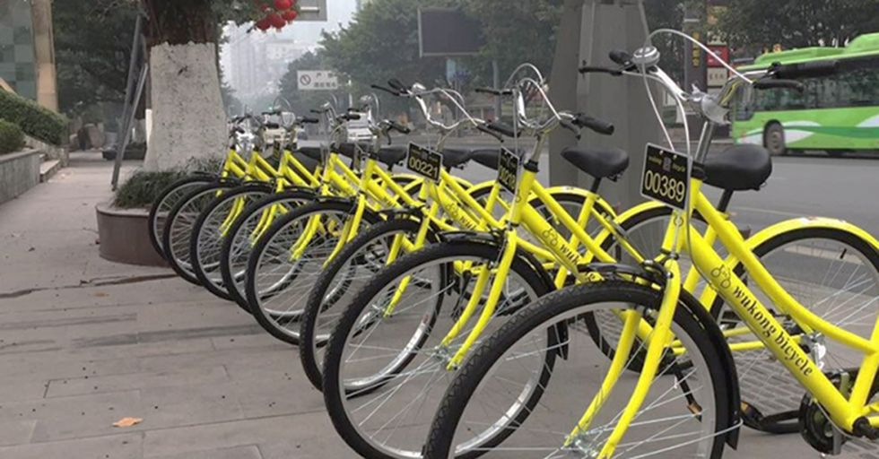A Bike-Sharing Company Failed To Do One Simple Thing, And Now They're Out Of Business