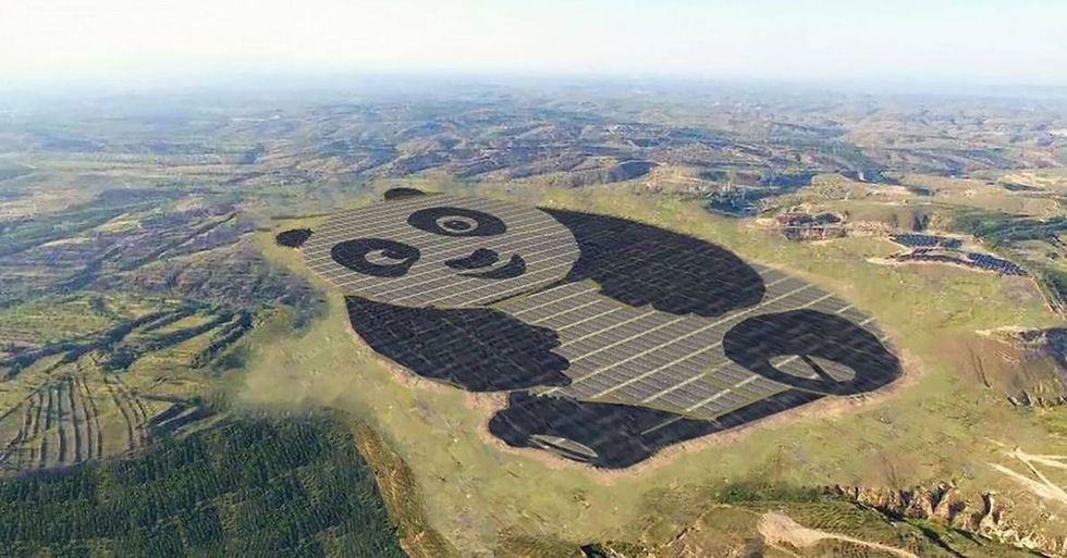 China Builds The World's First Panda-Shaped Solar Farm