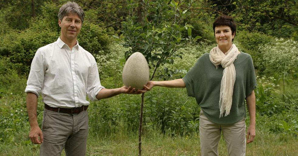 'Burial Pods' Break Down Organically To Minimize Waste And Help Grow Trees