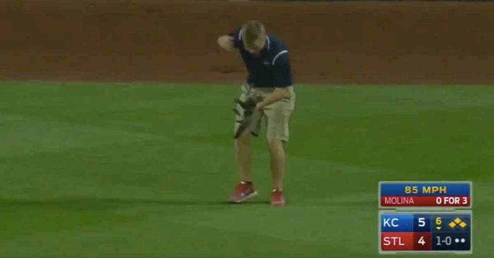 Cat Invades Baseball Game, Takes On Groundskeeper