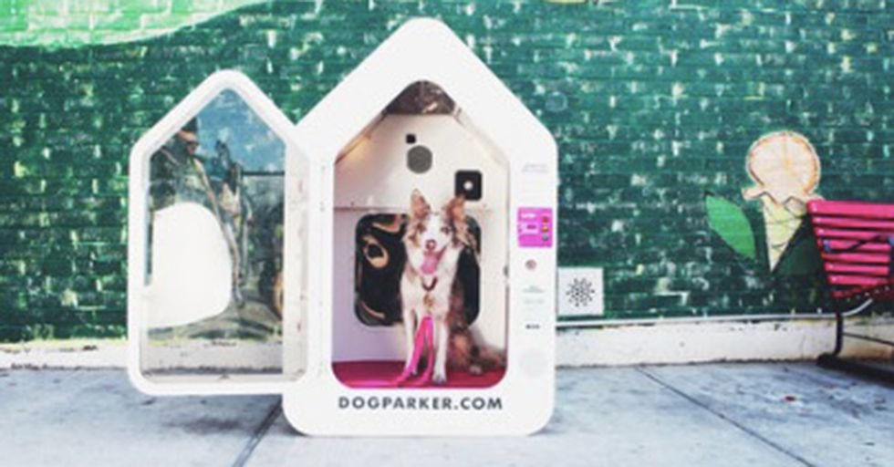 New 'On-Demand Doghouses' Give Urban Pet Owners Peace Of Mind — For A Small Fee