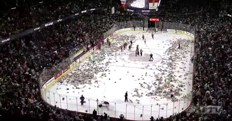 Minor League Hockey Team's Annual 'Teddy Bear Toss' Is An Amazing Spectacle For A Great Cause
