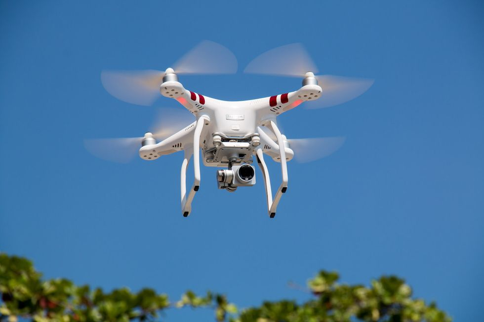 Meet The Nature-Loving Drones Able To Reforest The World