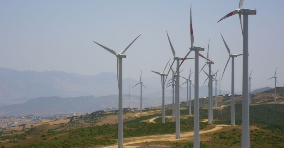 The Largest Wind Farm In Africa Will Light Up 1.5 Million Homes