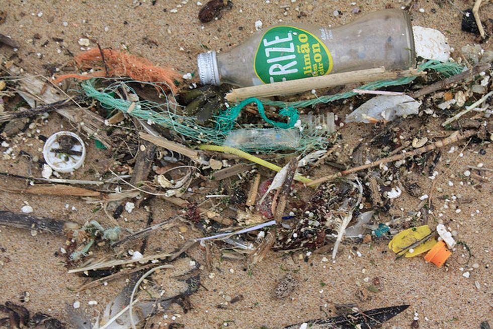 U.S. Government Takes Important Step Toward Banning Ocean-Clogging Microbeads
