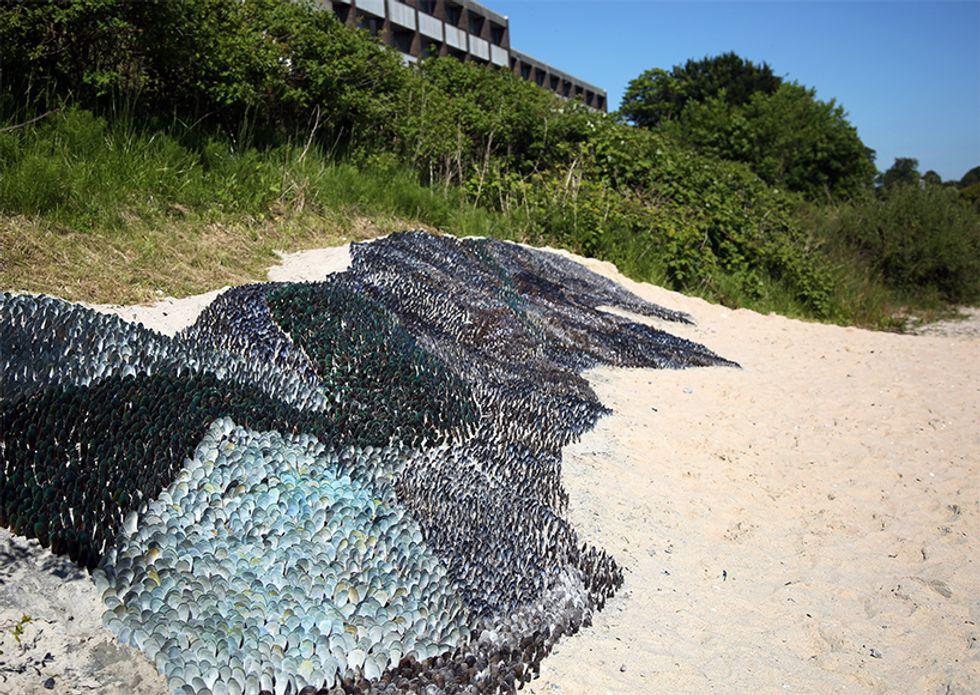 Recycled Seashells Transform Beach Into a Dazzling Art Installation