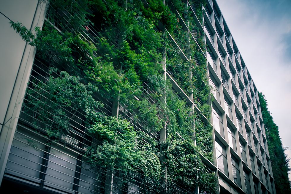 Go Inside The Tokyo Office Building Where Corporate Employees Work Alongside A Fully Operational Urban Farm