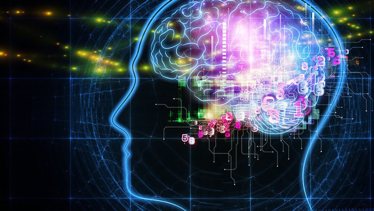 7 new things we've learned about the brain