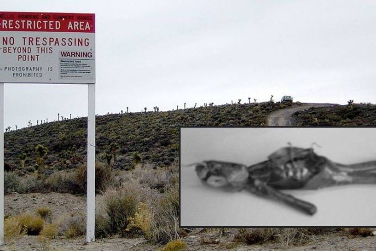 Over 200,000 people have signed up to storm Area 51 and get the truth about aliens.