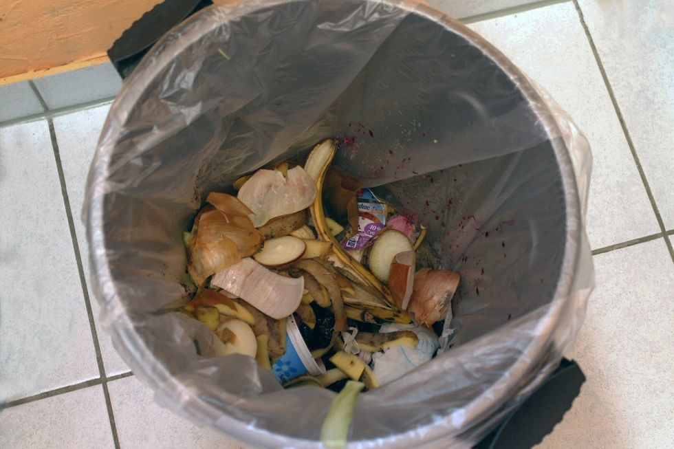 A Look Into A Restaurant Trash Can