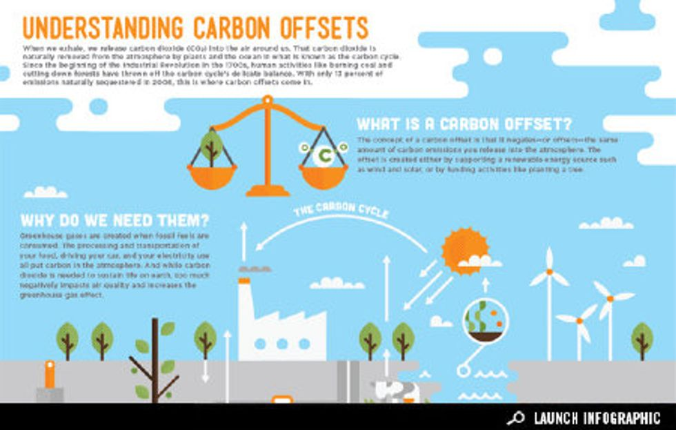 Infographic: Understanding Carbon Offsets