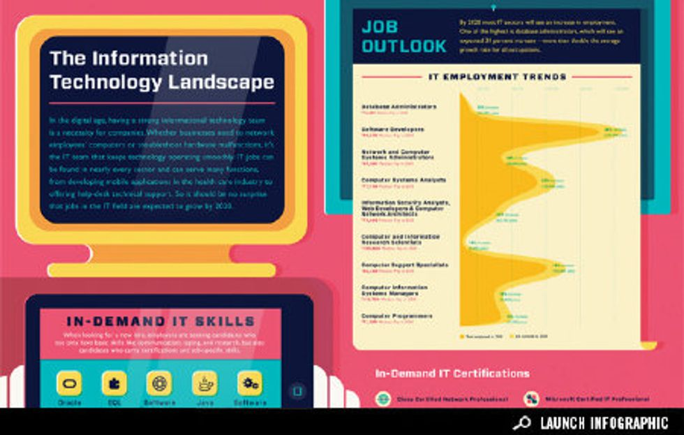 Infographic: The IT Landscape