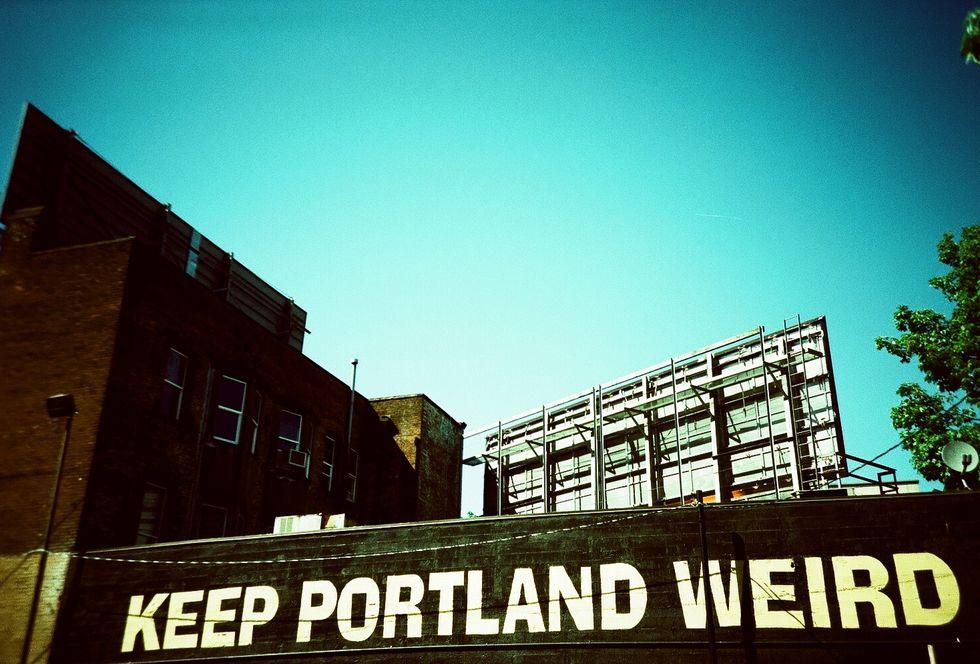 Street Artist Shepard Fairey Makes Hilarious Cameo on Portlandia