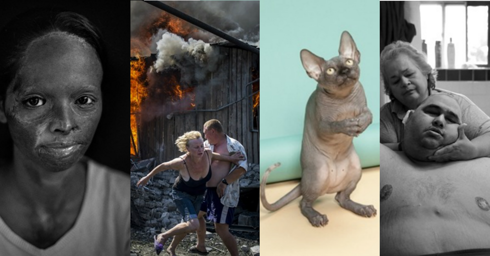 14 Stunning Finalist Photos from the World Photography Awards
