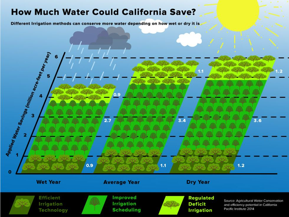 How Much Water Could California Save?