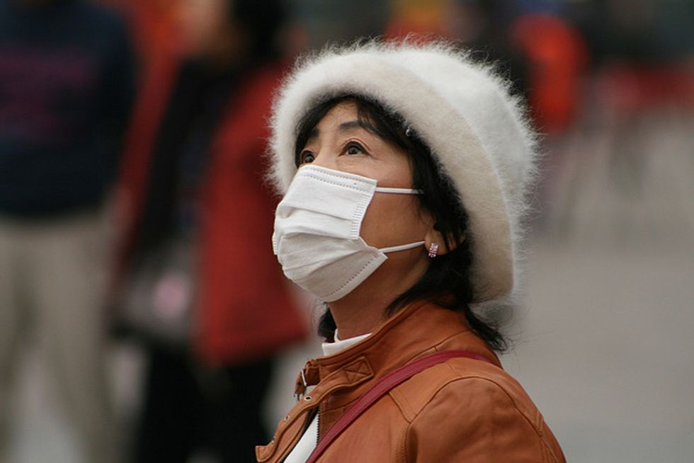 When Pollution Solutions Can Actually Damage the Environment