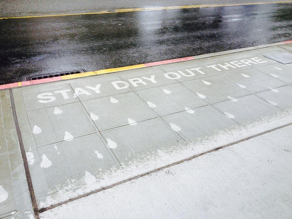 Seattle Public Art Project Only Appears When It Rains...
