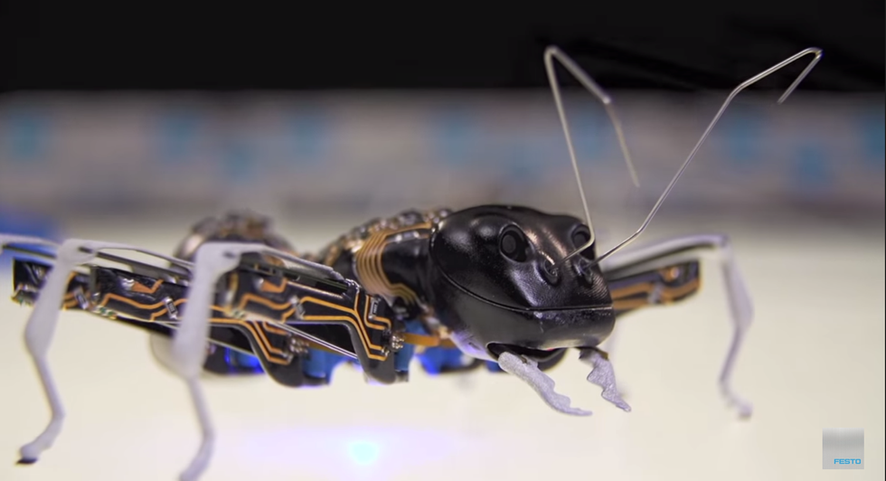"""""""BionicANTs"""" And """"eMotion Butterflies"""" Bridge The Gap Between Robots and Nature"""