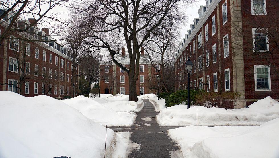 Harvard Business SchoolRecruitment Program Targets Women's Colleges