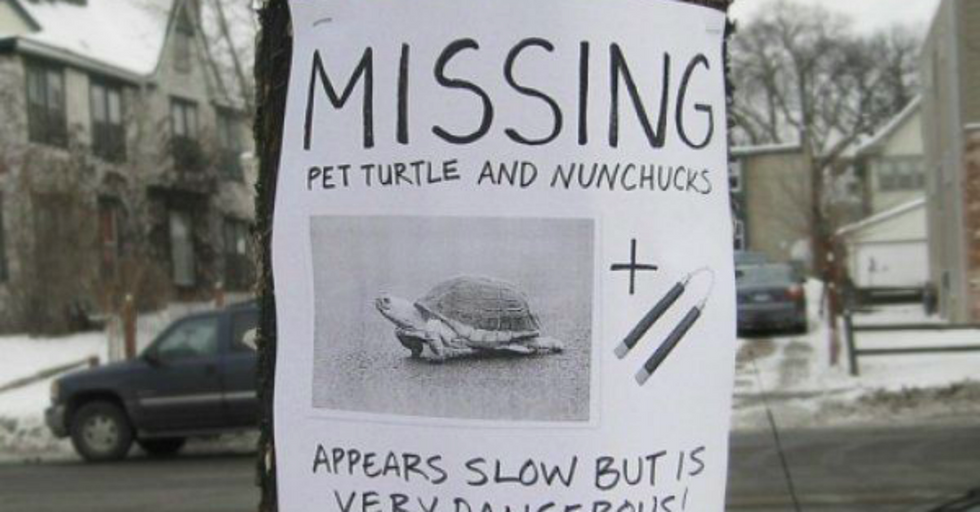 14 Hilarious And Clever Lost Pet Posters
