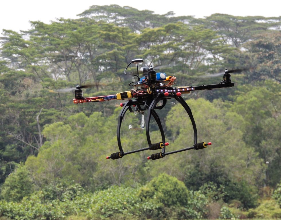Want To Plant One Billion Trees In A Single Year? Try Drones.