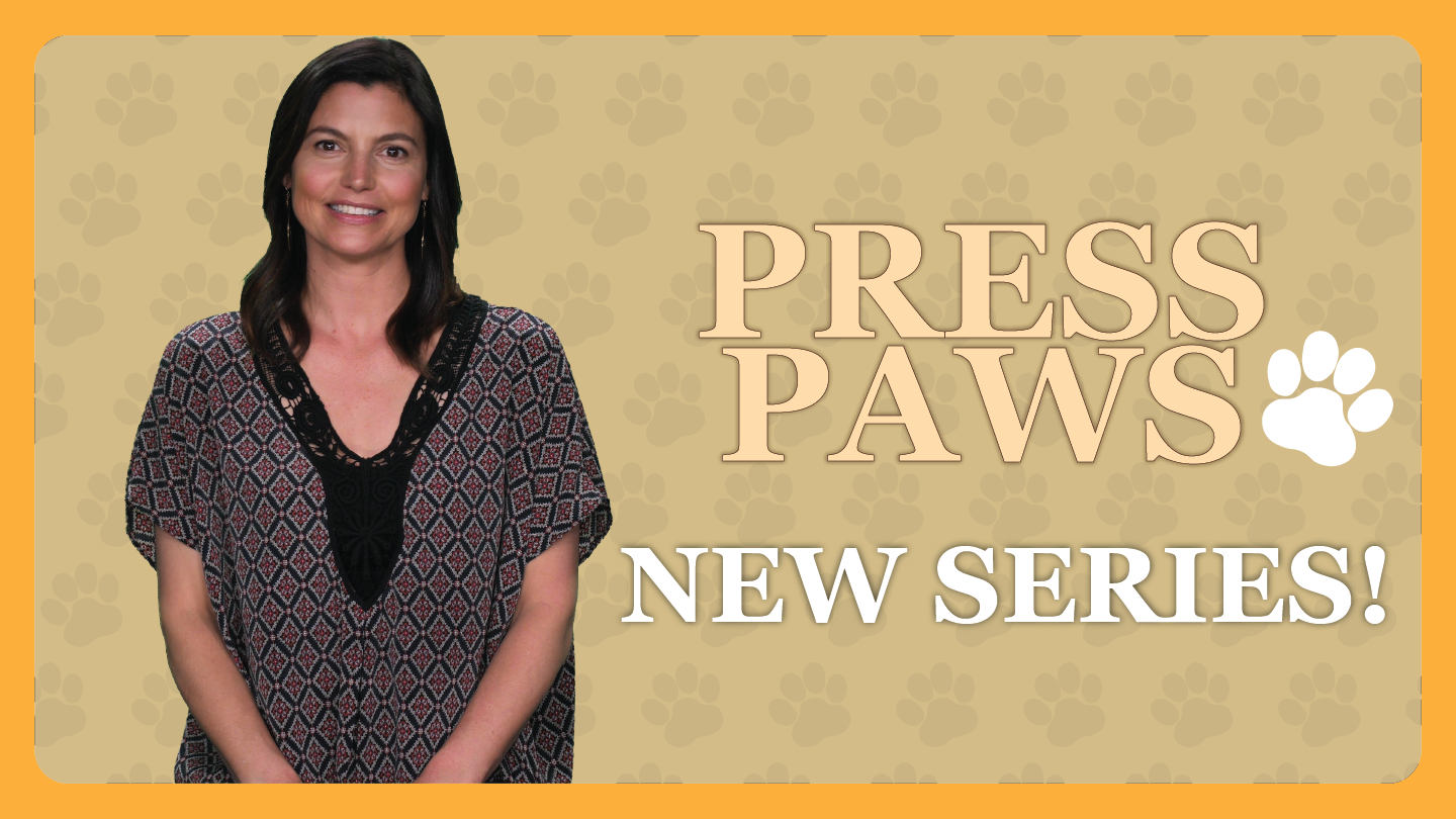 SERIES: Press Paws - Passionate stories of the unique bond between animals and people