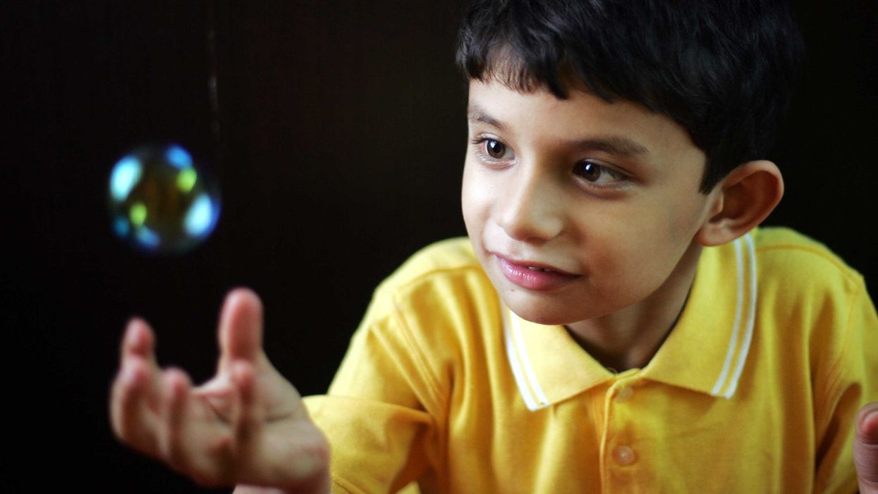Is autism caused by environmental or genetic factors?