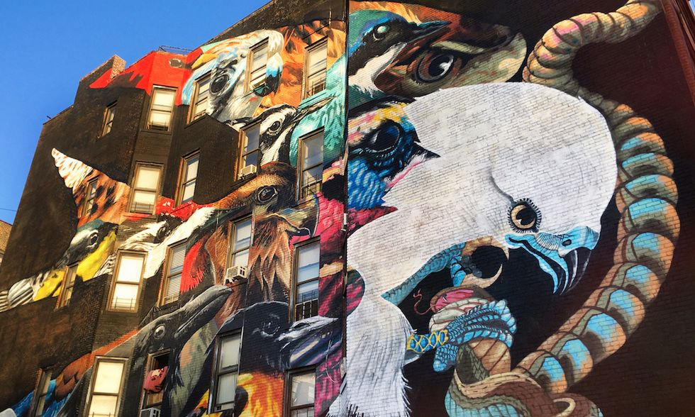 Street Artists and Muralists to Paint All 314 Threatened North American Bird Species