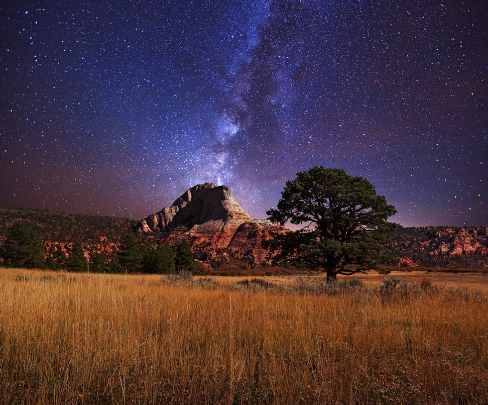 Celebrate 100 Years Of National Parks With This Stunning Road Trip