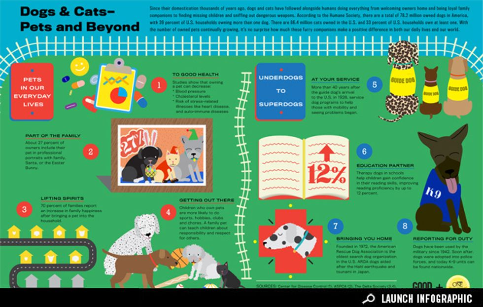 Infographic:When Dogs and Cats Go Beyond Being Pets