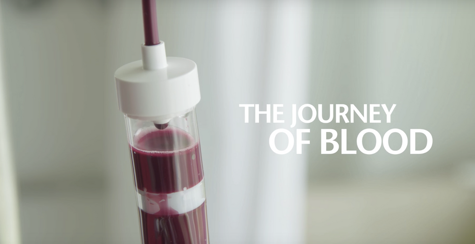 This Behind-The-Scenes Video Shows The Journey Of Blood From Donation To Recipient